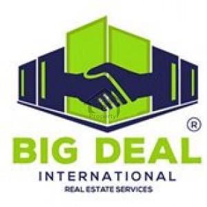 Big Deal International Real Estate Services