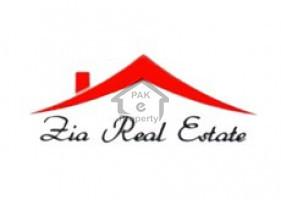 Zia Real Estate