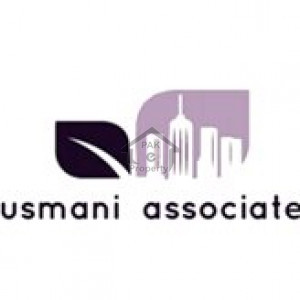 Usmani Associate