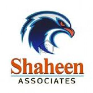 Shaheen Associates