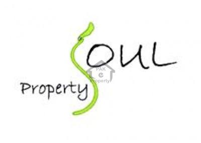 Property Soul