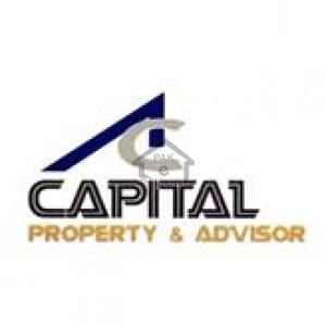 Capital Property & Advisor