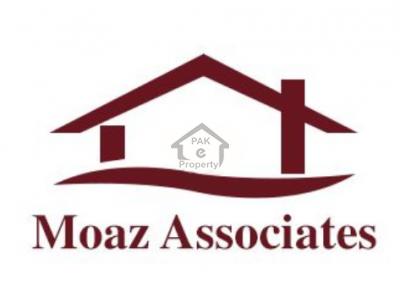 Moaz Associates