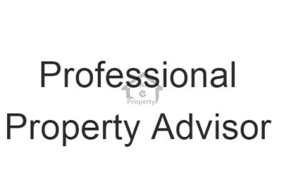 Professional Property Advisor