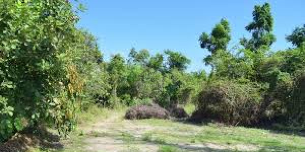 Residential Plot For Sale - Best Time To Investment