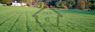 Lake City - 1 Kanal Plot File In Golf Estate 2 - Two Years Easy Installments - Buy Now
