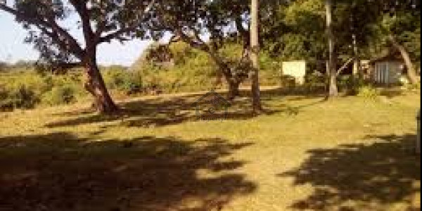 Wapda Town-4 Marla-Plot Is Available For Sale