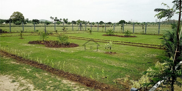 Wapda Town, 3 Marla-Commercial Plot Is Available For Sale