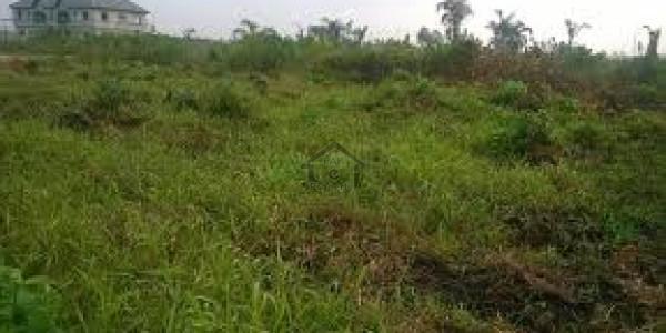 Khanewal Vehari Road - 32 Kanal Agricultural Land For Sale IN Vehari
