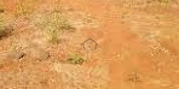 Balkasar - Land Is Available For Sale IN Chakwal