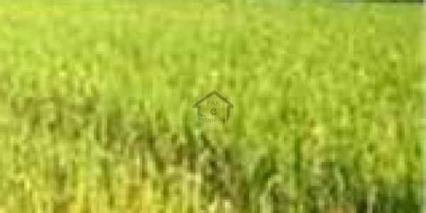 Thalian - Land Is Available For Sale IN Islamabad