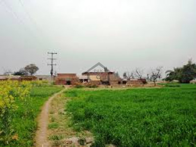Chak Beli Khan- 25 Kanal Cattle Farm For Sale In Chak Beli Khan Road Rawalpindi