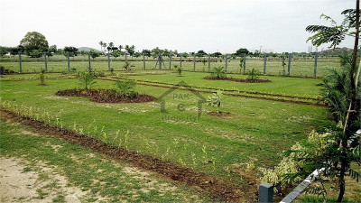Madni Colony,17 Marla Plot Is Available For Sale