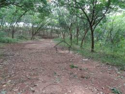 The Grand City, 6 Marla Commercial Plot For Sale