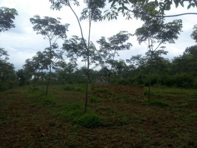 New City Phase 2, -Y Block 5 Marla Residential Plot For Sale.