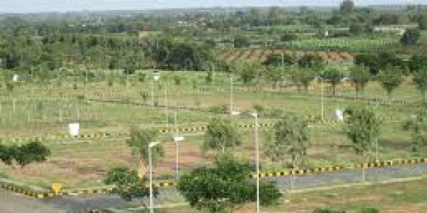 Bahria Town Phase 8 - Bahria Orchard,-5 Marla - Pair Plots for sale.