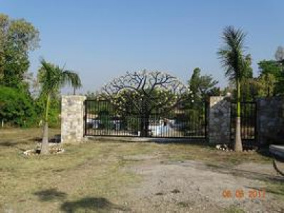 FDA City, - 10 Marla - Plot Is Available For Sale .